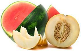 Different varieties of melon: Galia, green, yellow, Cantaloup and watermelon