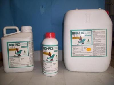 Biological catalyst with polysaccharides