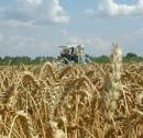 Analysis of fertilizers and chemicals amendments