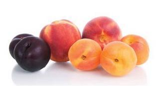 Stone friuts: apricot, nectarine, peach and plum