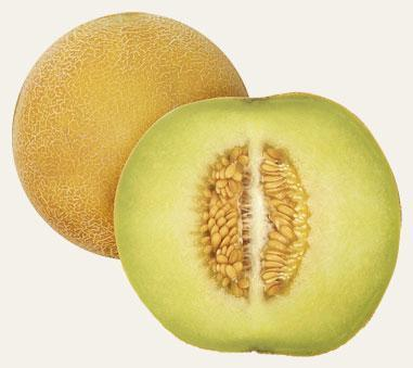 This variety of melon is characterized by its yellow colour and sweet and soft pulp with high cooling power.