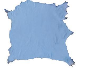 Paston in wet blue leather