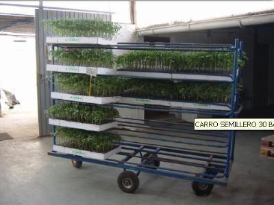 Cars for seedlings