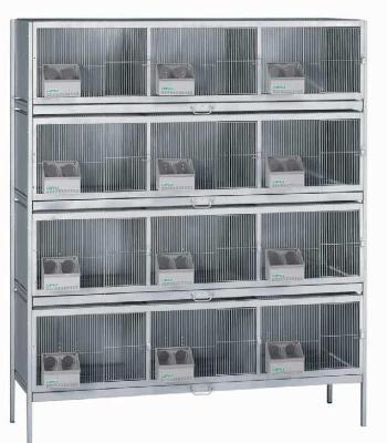 Cages and accesories for doves