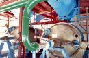 Oleoresin extractor
