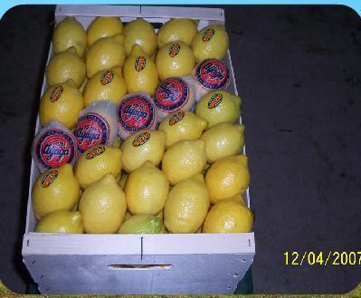Lemons (Ayaga namebrand)