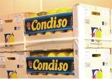 Canned Condiso Lemons