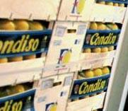 Canned Condiso Oranges