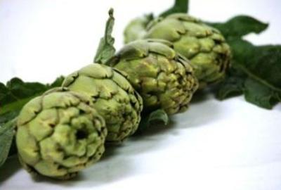 Ecological artichoke