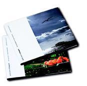 Design and print brochures