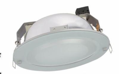 Circular aluminum downlight Lamp