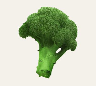 Fresh broccoli.