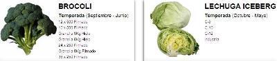 Broccoli, iceberg lettuce