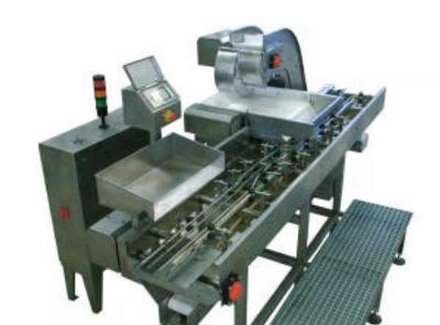Automatic and manual filling devices