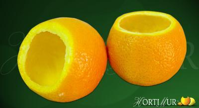 Outer orange peal for frozen sorbet