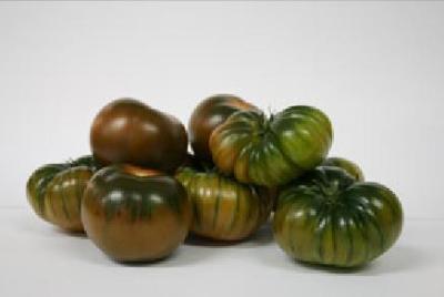 Tomato Salad, Tomato Long life, Pear Tomato, Tomato Rama, Raf Tomato, Tomato Kumato