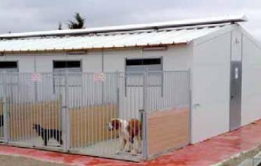 Cages and accesories for dogs