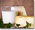 Leche y derivados lácteos