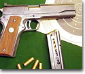 Armas deportivas y municiones