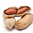 Semillas y frutos oleaginosos