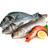 Comercialización de pescado fresco y congelado