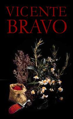 VICENTE BRAVO, S.L.