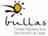 Wine (Bullas designation of origin)