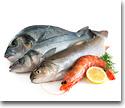 Fresh fish in general