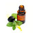Essential oils for the food industry