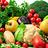 Organic farming (fresh fruits and vegetables)