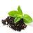 Organic infusions, coffee and tea