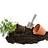 Peat for gardening