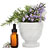 Essential oils for the chemical and perfume industries