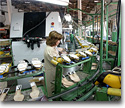 Machinery for the leather, hide and footwear industry