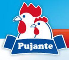 HIJOS DE JUAN PUJANTE, S.A.