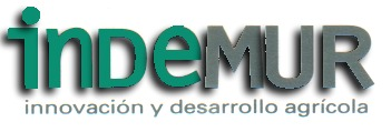INNOVACIONES Y DESARROLLOS MURCIA, S.L.