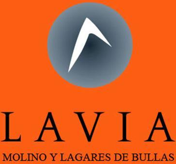 MOLINO Y LAGARES DE BULLAS, S.L.