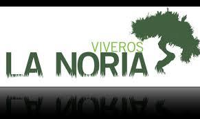 JARDINERIA Y VIVEROS LA NORIA, S.L.