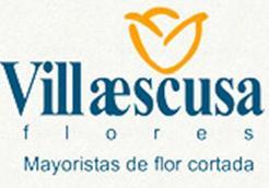 MOYA VILLAESCUSA, S.L.