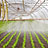 Greenhouses for farming technology